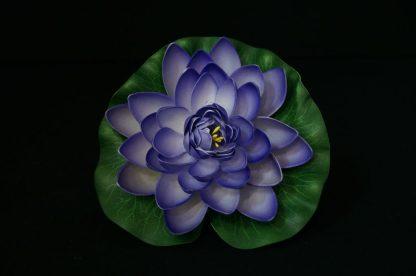 Floating Lotus flowers - Purple