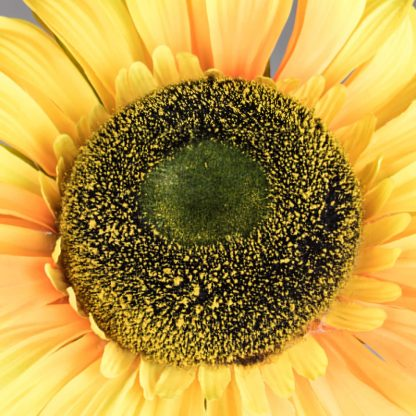 Artificial Sunflower 5