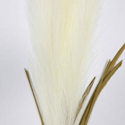Artificial Pampas Grass - White