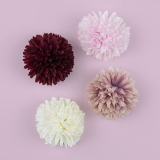Chrysanthemum Flower Heads