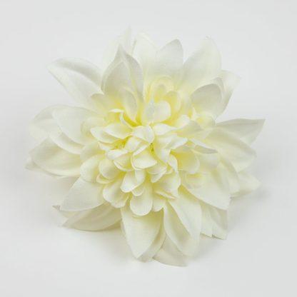 Dahlia Pinnata Flower Heads Ivory FHD117