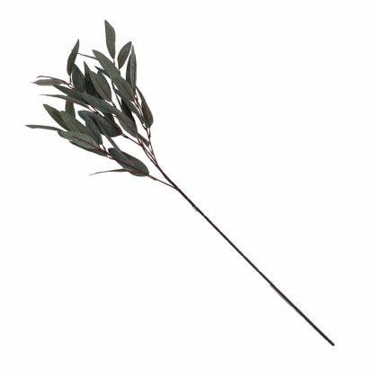 Long Leaf Eucalyptus Spray